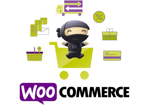 Criação de Loja Virtual com WooCommerce 2
